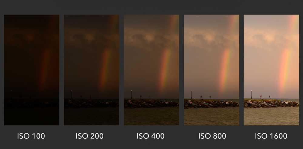 ISO в фотоаппарате что это2