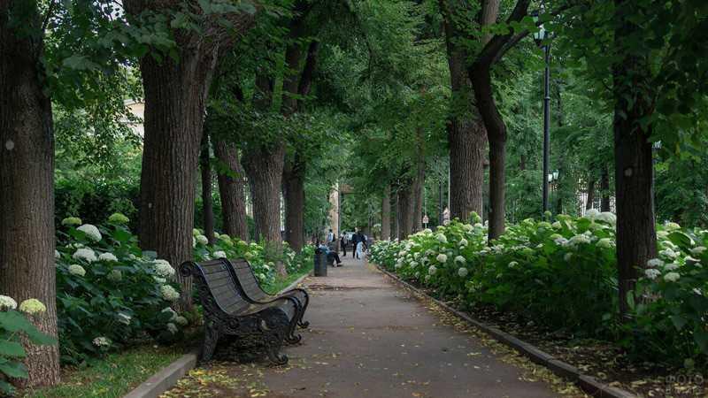 Москва Нескучный Сад