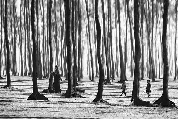 знаменитые фотографы мира и их работы26