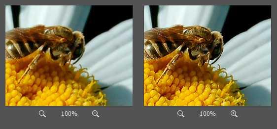 как фотошопе поменять формат11