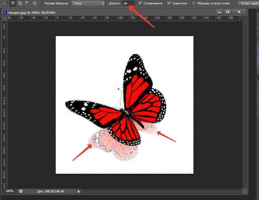 Как в фотошопе пользоваться волшебной палочкой5