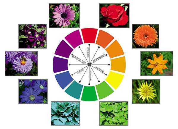 Цветочная композиция из живых цветов5
