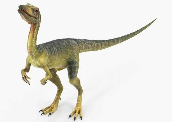 Какие бывают динозавры12