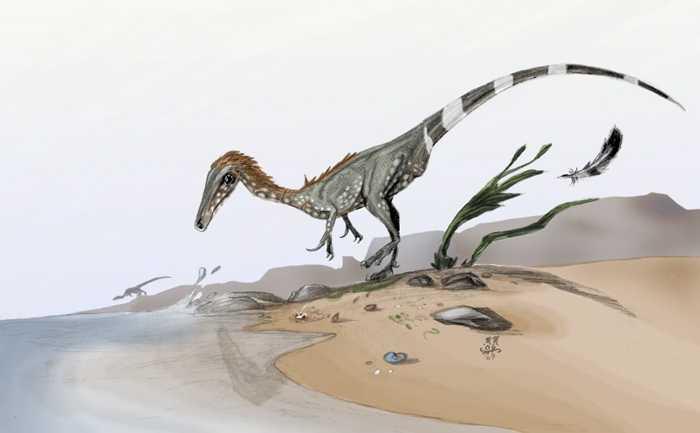 Какие бывают динозавры13