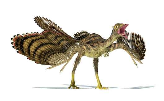 Какие бывают динозавры18