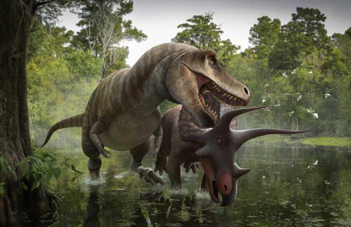 Какие бывают динозавры21