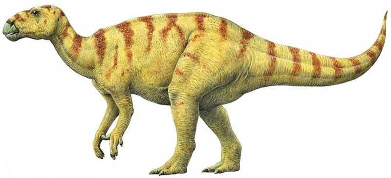 Какие бывают динозавры22