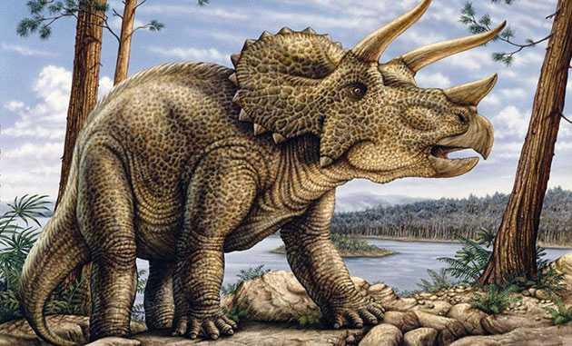 Какие бывают динозавры23