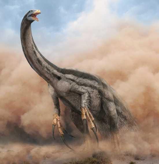 Какие бывают динозавры24