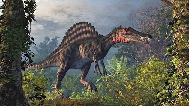 Какие бывают динозавры25