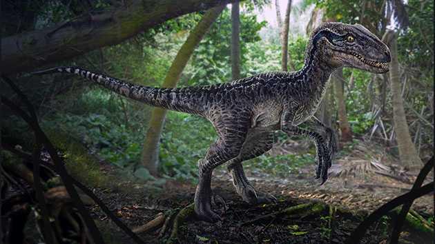 Какие бывают динозавры26