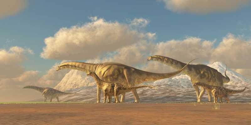 Какие бывают динозавры27