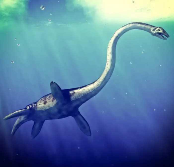 Какие бывают динозавры3