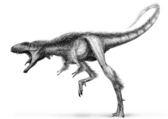 Какие бывают динозавры5