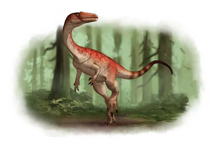 Какие бывают динозавры6
