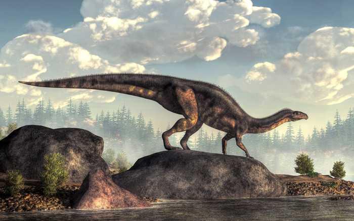 Какие бывают динозавры7